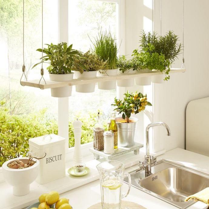 Mini Garden in Your Kitchen Interior