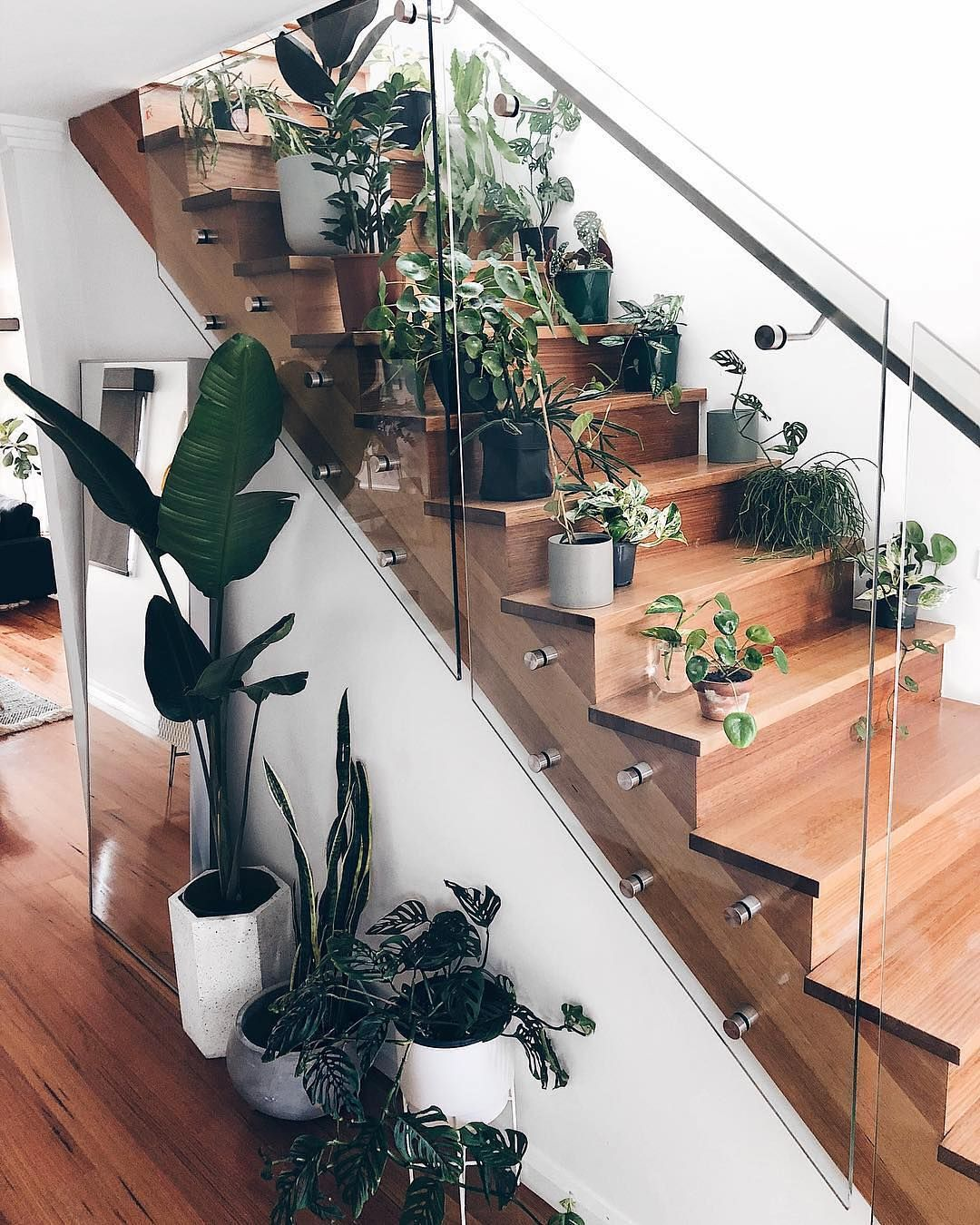 Stairs for Ornamental Plants